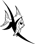 Angel Fish Decal 1