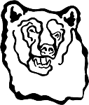 Bear Decal 6