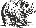Bear Decal 7