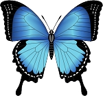 Colored Butterfly Decal 11