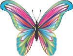 Colored Butterfly Decal 15
