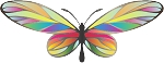 Colored Butterfly Decal 16