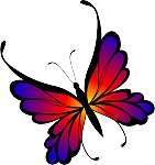 Colored Butterfly Decal 24