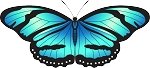 Colored Butterfly Decal 4