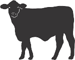 Cow Decal 10