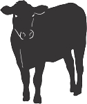 Cow Decal 14