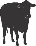 Cow Decal 16