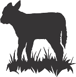 Cow Decal 20