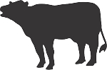 Cow Decal 2