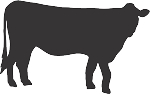 Cow Decal 8