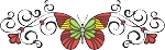 Decorative Butterfly Color Decal 1