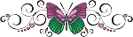 Decorative Butterfly Color Decal 3