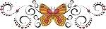 Decorative Butterfly Color Decal 5