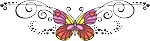Decorative Butterfly Color Decal 8