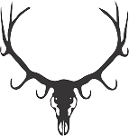 deer skull 12 decal