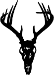 deer skull 1 decal