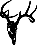 deer skull 4 decal