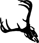 deer skull 5 decal