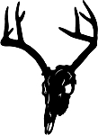deer skull 9 decal
