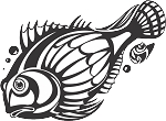 Tropical Fish Decal 24