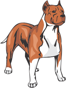 American Staffordshire Terrier Decal