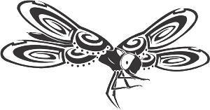 dragonfly 80 decal